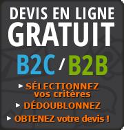 Obtenir un devis en ligne pour la location ou l'achat d'un fichier B2B ciblé