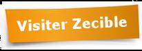 Visitez le Site Web Zecible.fr, location et achat de fichiers Email