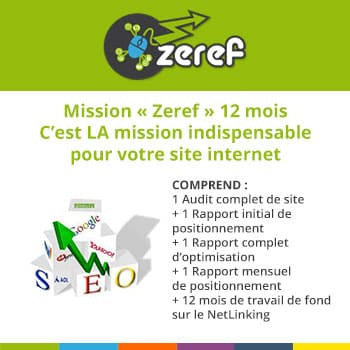 Mission de Référencement Naturel de 12 Mois - Pack ZEREF