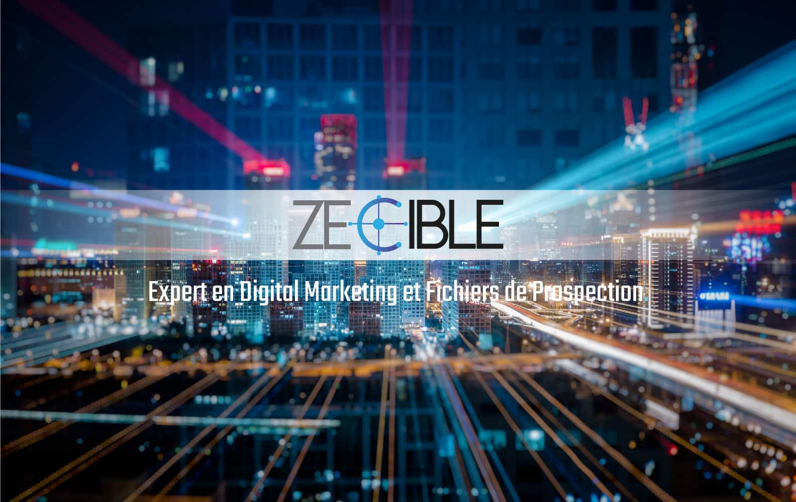 Zecible Expert Digital Marketing
